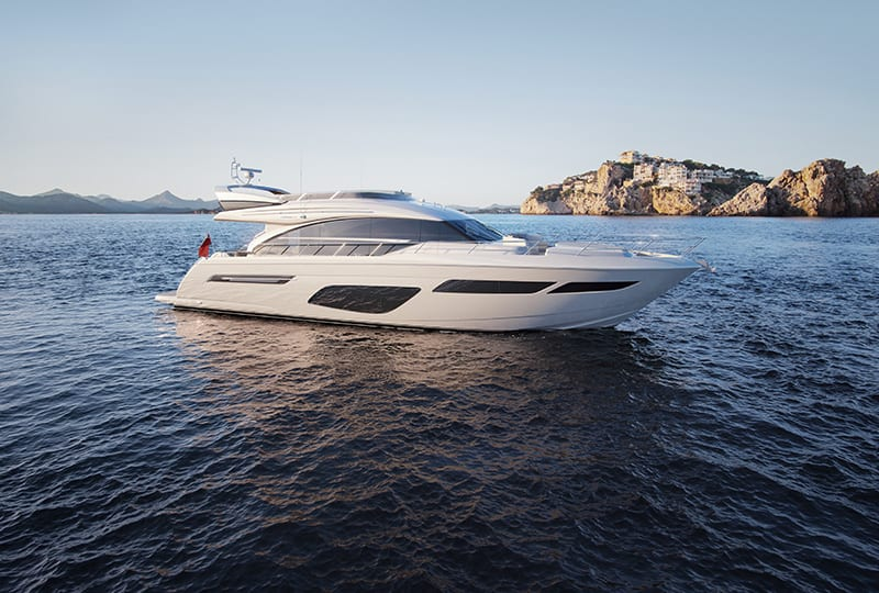 Announcing the Striking New Princess 70
